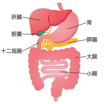 消化器内科・胃腸内科
